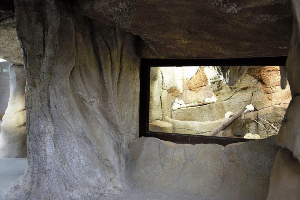 grottes de la ferme aux crocodile