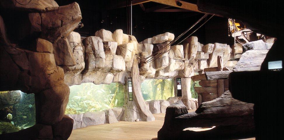 faux rocher aquarium d'audierne