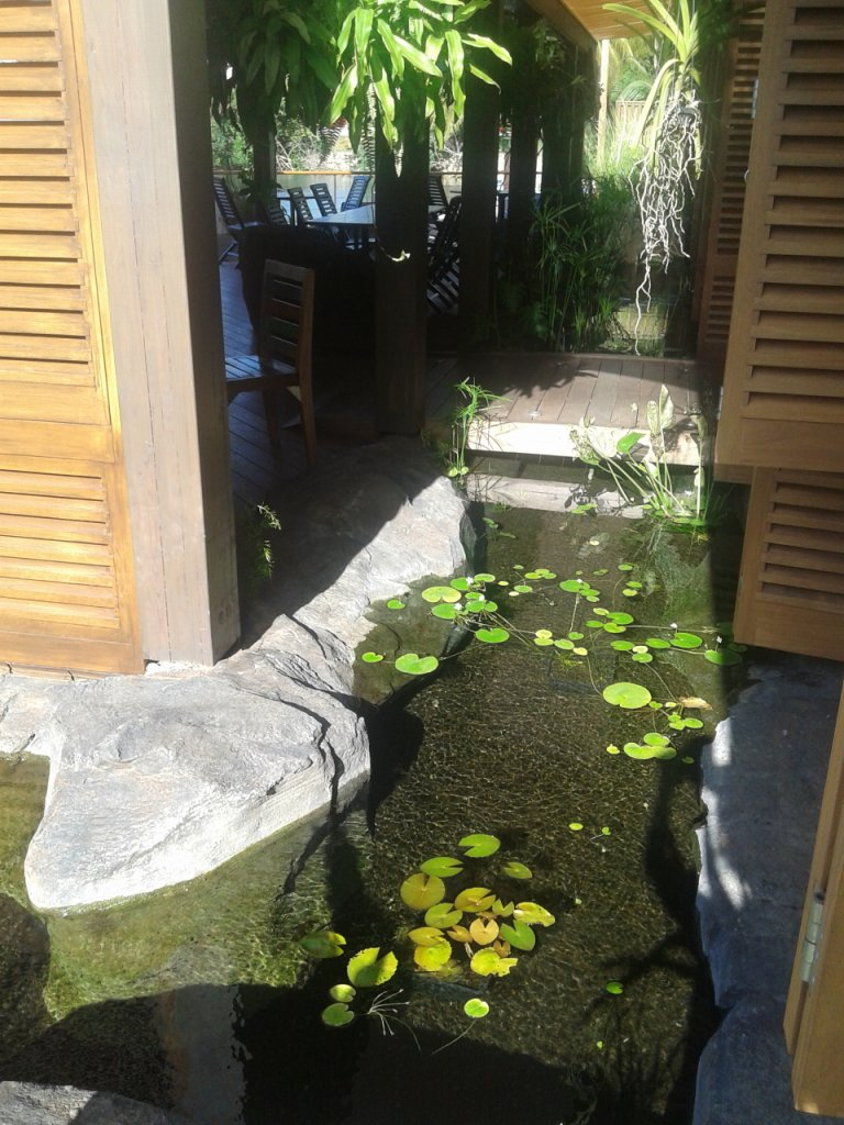 faux rocher de l'aquarium de la gouadeloupe